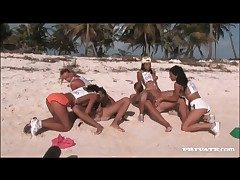 Orgy on a sandy strand thither sexy sluts